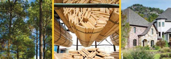 PotlatchDeltic 2Q earnings dart 63%, Arkansas timberland supplied for $20 million thumbnail