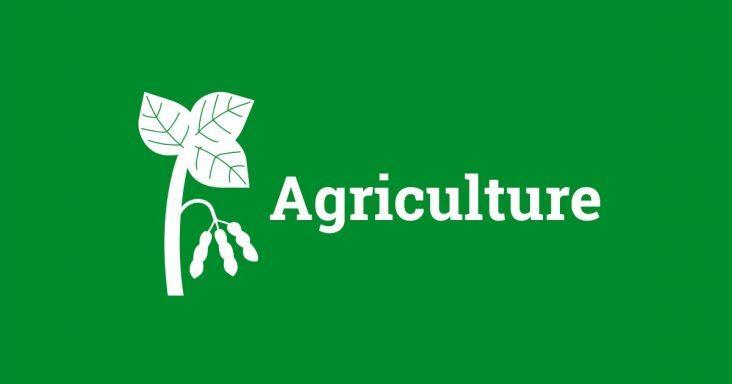 New farm service agency executive director arkansas rural for Usda rural development arkansas