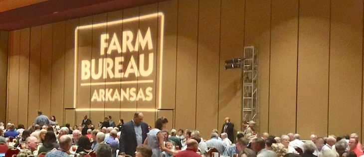 Arkansas Farm Bureau leader says farmers will rebound from tariffs, rains and floods thumbnail
