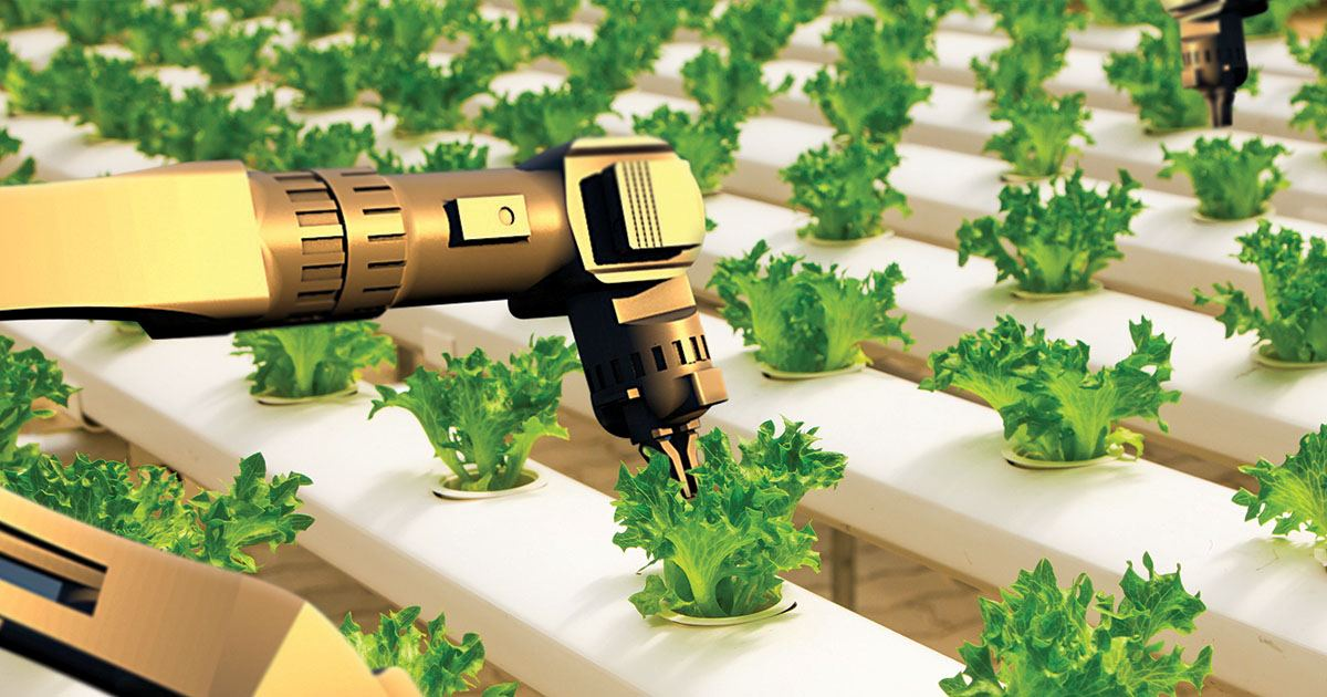 Ag industry set to boom during the next century thumbnail